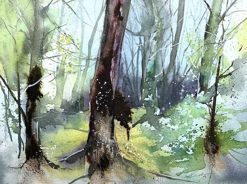 Im Wald, 2019